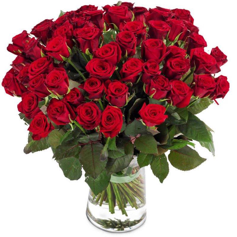 Super Bukiet 50 Róż Czerwonych LT06